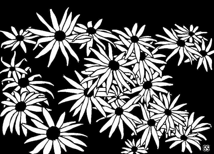 sim publishing flowers